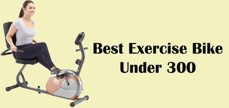 10 Best Exercise Bike Under 300
